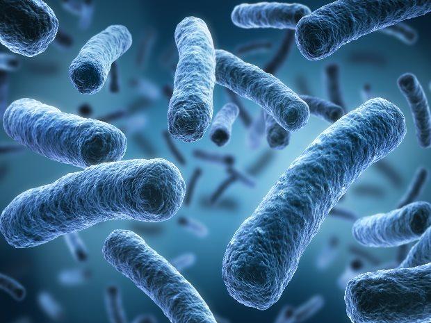 Legionellen im Wasser